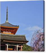 Cherry Blossoms And Kiyomizu-dera Canvas Print