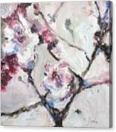 Cherry Blossoms In Abstraction Canvas Print