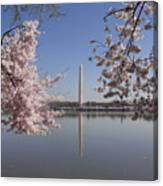 Cherry Blossoms Monument Canvas Print
