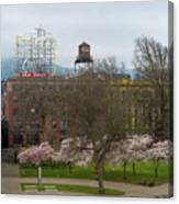 Cherry Blossoms Trees In Portland Old Town Canvas Print