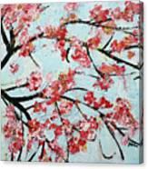 Cherry Blossoms V 201631 Canvas Print