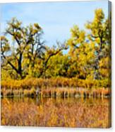 Cherry Creek Pond In Autumn Canvas Print