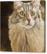 Chessie Canvas Print