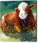 Chester Canvas Print