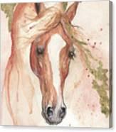 Chestnut Arabian Horse 2016 08 02 Canvas Print