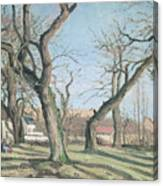 Chestnut Trees At Louveciennes Canvas Print