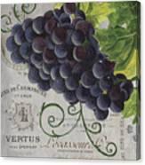 Vins De Champagne 2 Canvas Print