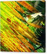 Chicago Palm House Canvas Print