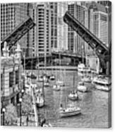 Chicago River Boat Migration In Black And White Canvas Print