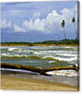 Chichirivihe Bay Canvas Print