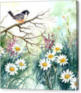 Chickadee And Daisies Canvas Print