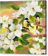 Chickadees In The Dogwood Tree Canvas Print