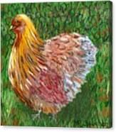 Birschen Chicken  Canvas Print
