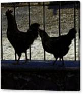 Chicken In Silhousette Canvas Print