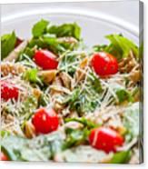 Chicken Pasta Salad Canvas Print