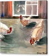 Chickens In The Barnyard Canvas Print