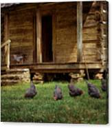 Chickens - Log House - Farm Canvas Print