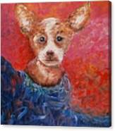 Chihuahua Blues Canvas Print