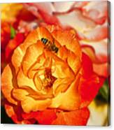 Chihuly Rose With Bee Canvas Print