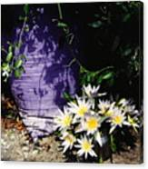 Children's Lotus Boquet Canvas Print