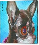 Chili Chihuahua Canvas Print