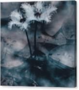 Chilling Blue Lagoon Details Canvas Print