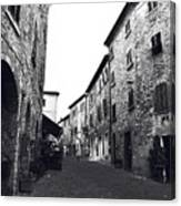 Chilling Out In Tuscany Canvas Print
