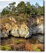 China Cove, Point Lobos Canvas Print