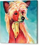 Chinese Crested Sunset Canvas Print