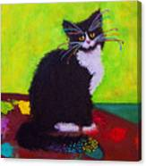 Ching - The Studio Cat Canvas Print