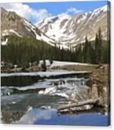 Chinns Lake Reflections 3 Canvas Print