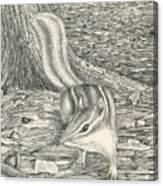 Chipmonk Canvas Print