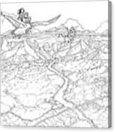 Chiricahua Mountains Canvas Print