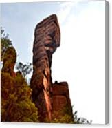 Chiricahua Mountaintop 006 Canvas Print