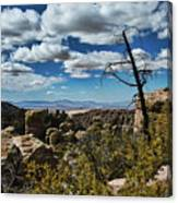 Chiricahua National Monument Canvas Print
