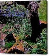 Chitactac Ohlone Mortars Canvas Print