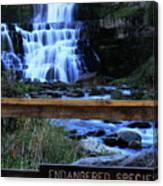Chittenango Falls State Park Canvas Print