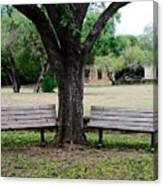 Choose Your Bench Canvas Print