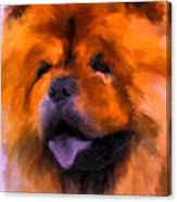 Chow Portrait Canvas Print