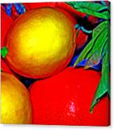 Christmas Fruit Canvas Print