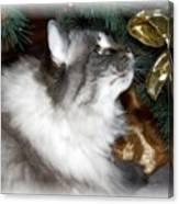 Christmas Kitty Canvas Print