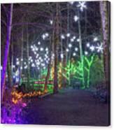 Christmas Lights Decoration Along Lafarge Lake Path Canvas Print