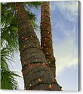 Christmas Lights On Palm Trees Canvas Print