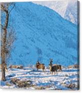 Christmas Morning Magic Canvas Print