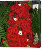 Christmas Poinsettia Display 002 Canvas Print