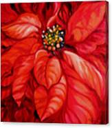 Christmas Poinsettia Canvas Print