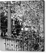 Christmas Snow in the Garden Canvas Print