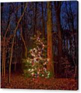 Christmas Tree In Forest Canvas Print