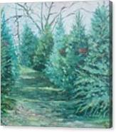 Christmas Tree Lot Canvas Print