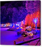 Christmas Trees Row And Frozen Lake View Canvas Print